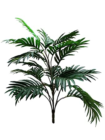 d79f26e421af Fourwalls Artificial Areca Plants with 21 Leaves   Without Pot (75 cm Total  Height