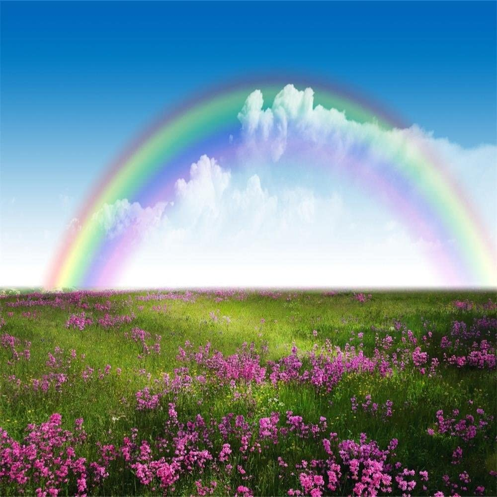AOFOTO 5x5ft Spring Meadow Photography Backdrop Rainbow Flower Field Background Blue Sky Baby Kid Child Newborn Infant Artistic Portrait Nature Scenic Photo Studio Props Video Drape Vinyl Wallpaper