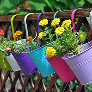 Hanging Flower Pots, 10 PCS Metal Iron Flower Holders with Drainage Hole Basket Bucket Planters Balcony Garden Patio Planter Wall Fence Hanging Flower Pot with Detachable Hook Home Decor
