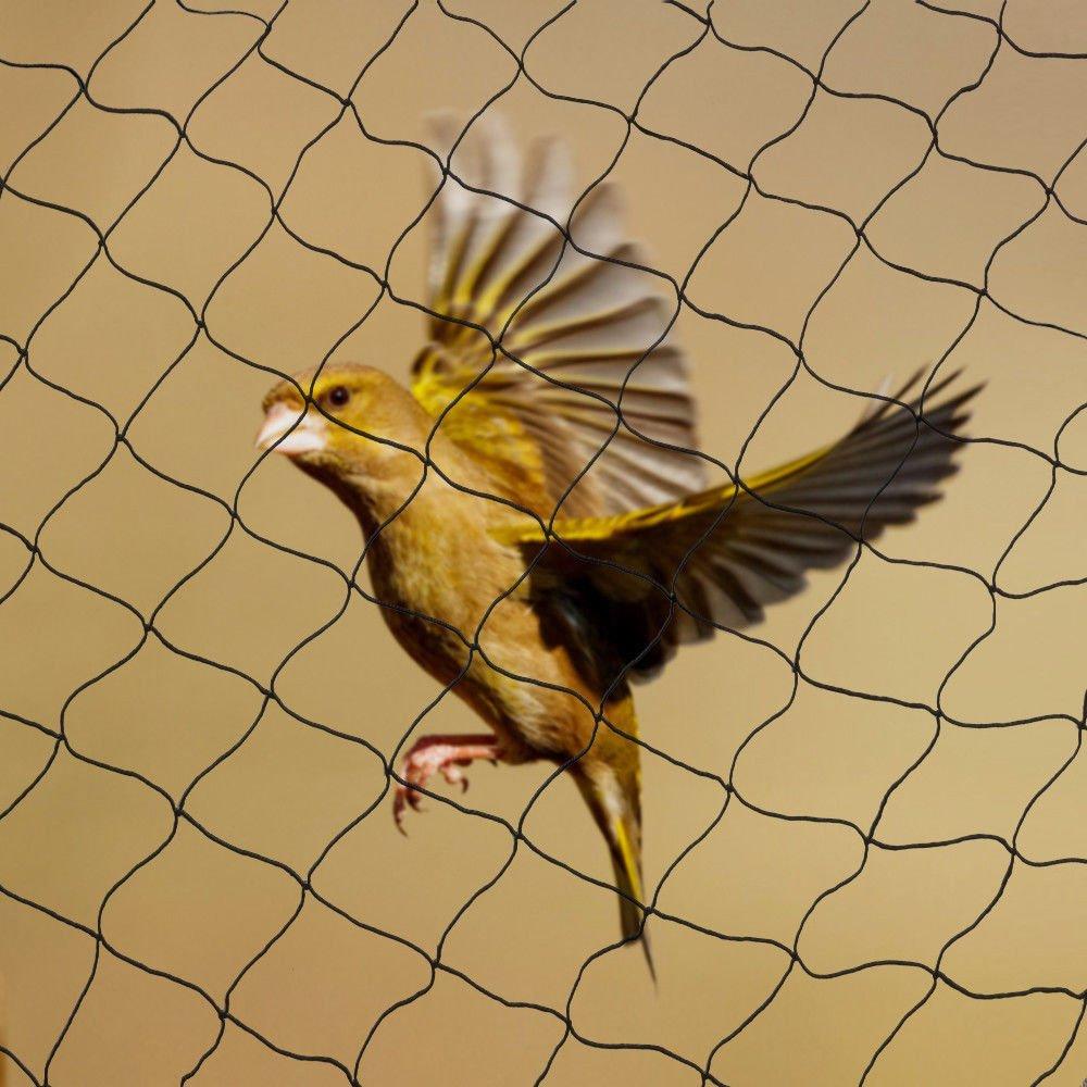 Neu Vogelschutznetz Laubschutznetz Gartennetz Teichnetz Vogelnetz ...