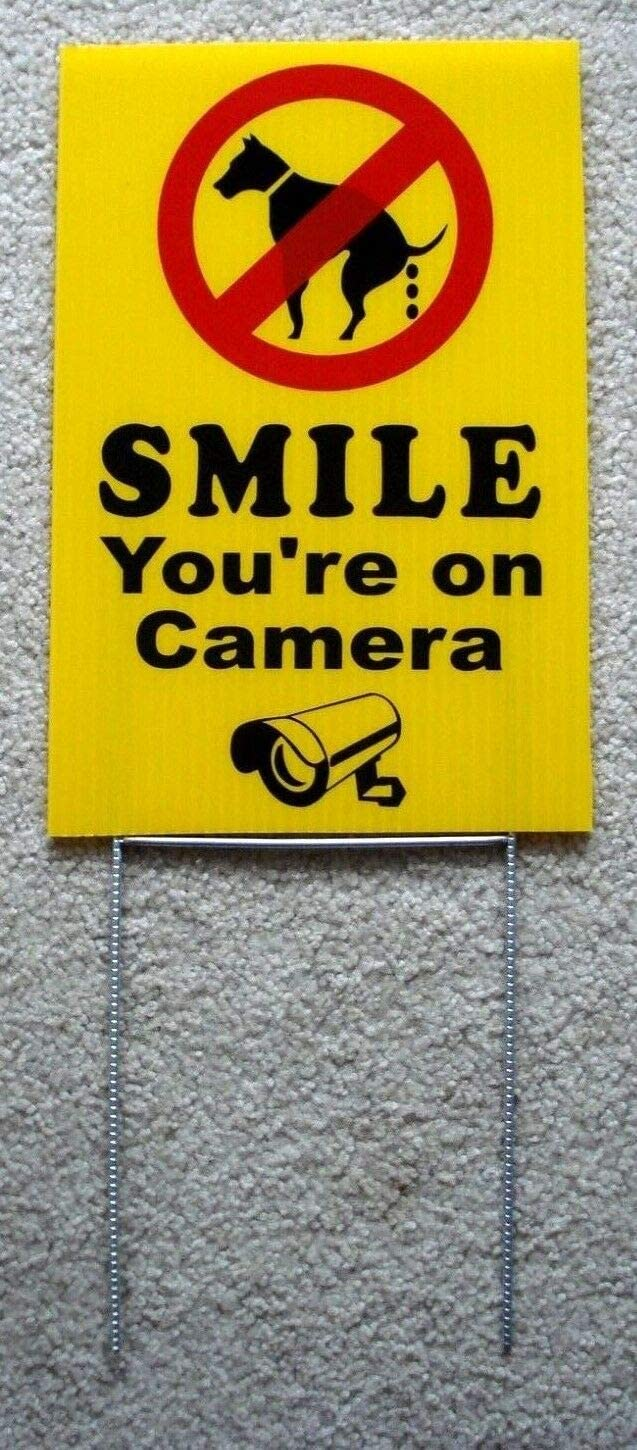 """Smile You/'re On Camera NO DOG POOP PEE ZONE signs 12/"""" x 8/"""" with steel stands 2"""