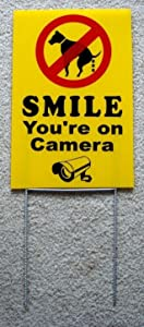 Peter Select NO Dog Poop - Smile You're ON Camera 8''X12'' Plastic Coroplast Sign with Stake y Funny Retro Vintage Business Nostalgic Signs