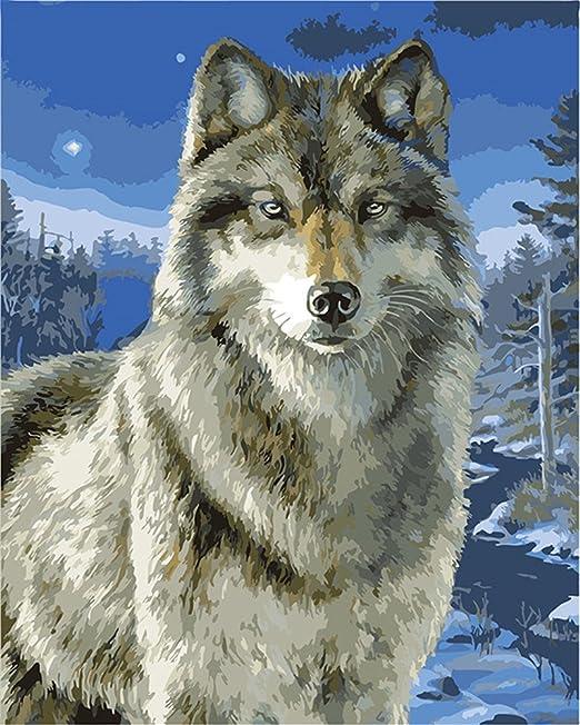 Captaincrafts New Malen Nach Zahlen 16x20 Fur Erwachsene K0inder Leinwand Snow Wolf Wolf Tiere Frameless Amazon De Kuche Haushalt