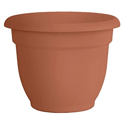 Fiskars 20-56112 12 Inch Ariana Planter with Self-Watering Grid, Color Clay : Self Watering Planters : Garden & Outdoor