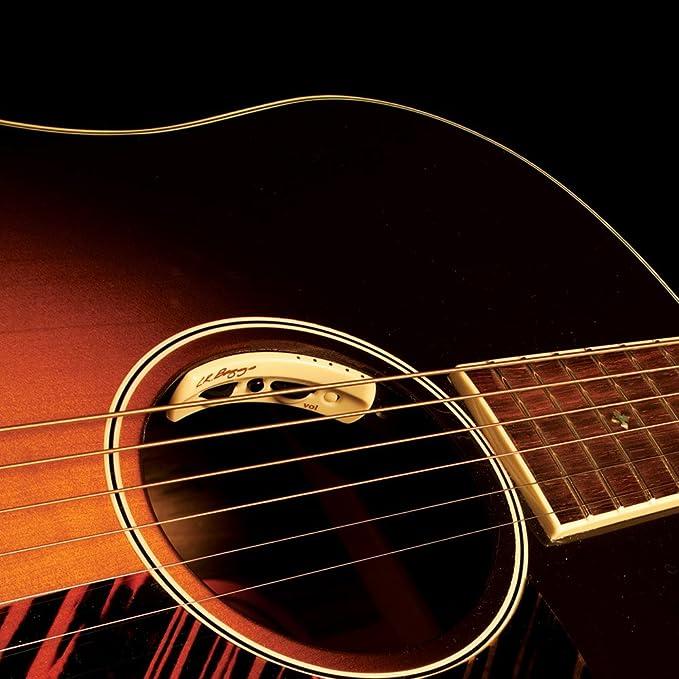 L.R. Baggs Anthem Sl - Pastilla acústica con micrófono: Amazon.es: Instrumentos musicales