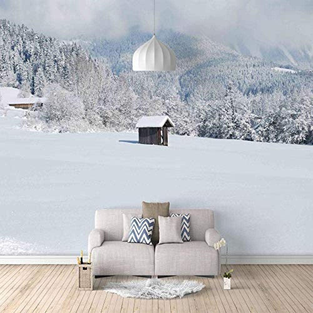 Amazon Djskhf 壁画雪の家カスタム3d Hd壁紙家の装飾塗料ノスタルジックなパネル写真家の芸術のリビングルームの寝室のキッチン 360x250cm 壁紙