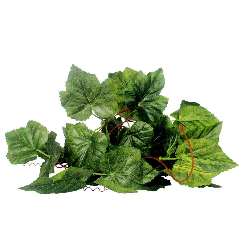 Vigne Feuilles Artificiel Plante Décoration pour Reptile Terrarium Vivarium - Vert 2M - 01 Generic