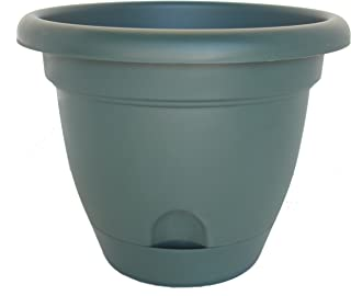 "product image for Bloem Midsummer Lucca Planter, 10"", Midsummer Night"