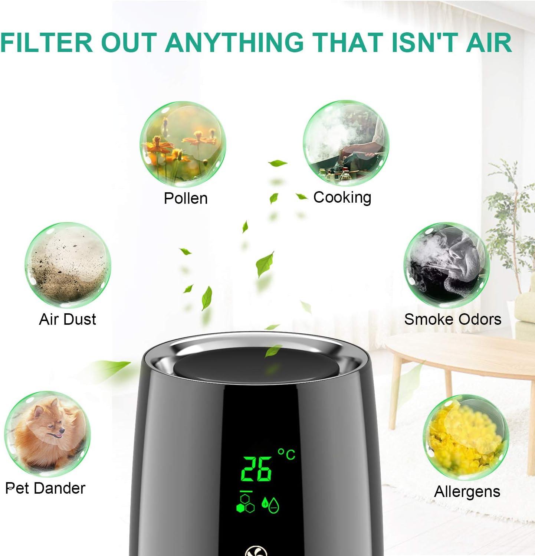 Acekool Air Purifier D01