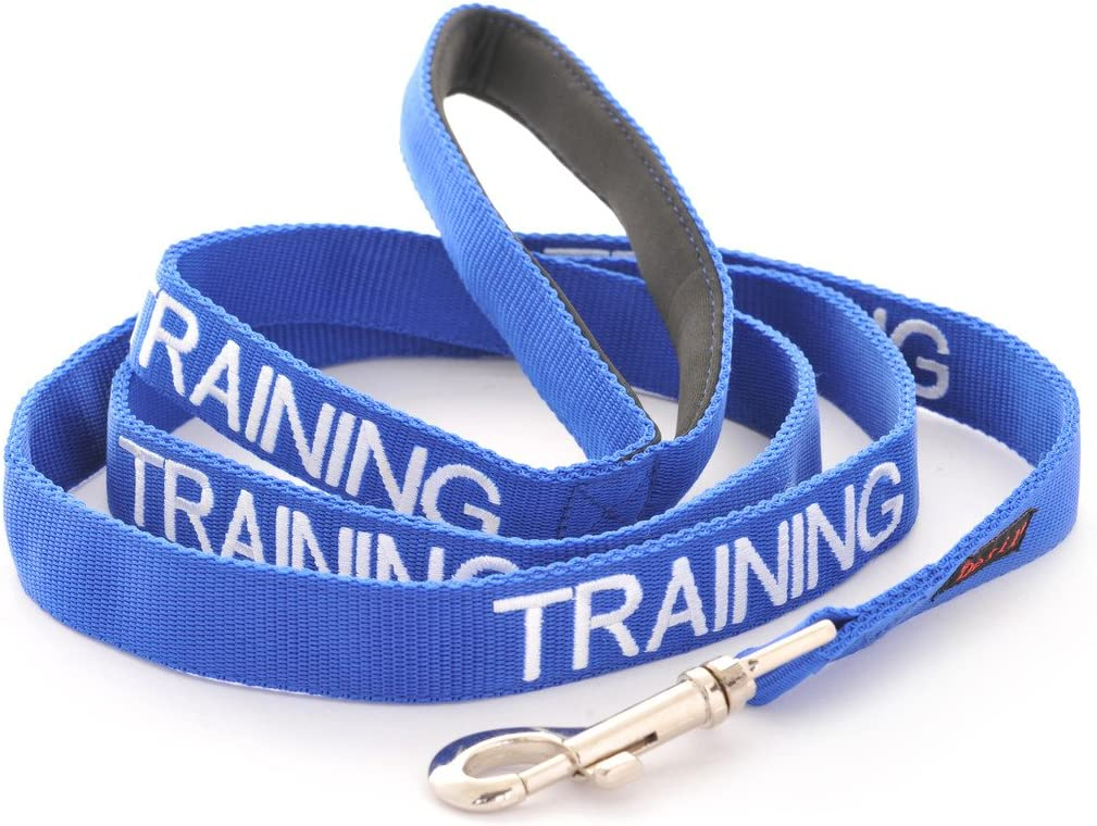 Dog Award Winning Dexil TRAINING Blue Warning Dog Colour Coded Padded Personalised 1.8m 6ft Lead Leash To Prevent Accidents or Incidents In Training//Do Not Disturb
