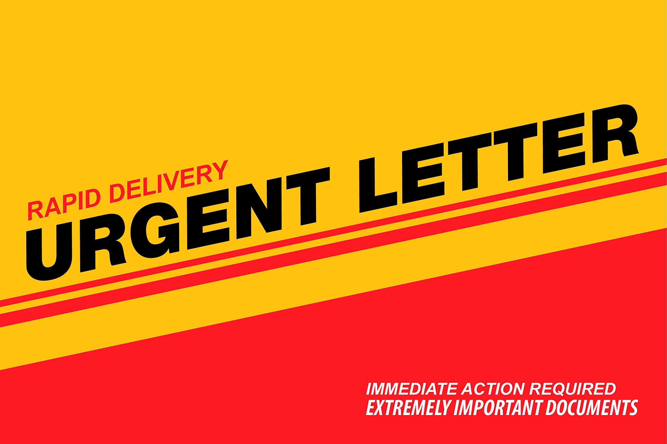 6 x 9 Express Envelope (YELLOW)