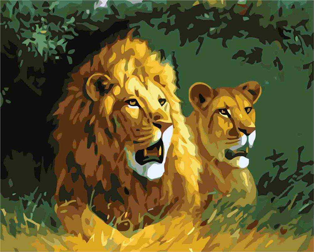 [Holzrahmen] DIY ölgemälde, Malen nach Zahlen Kits- zwei Löwen 1620 inch