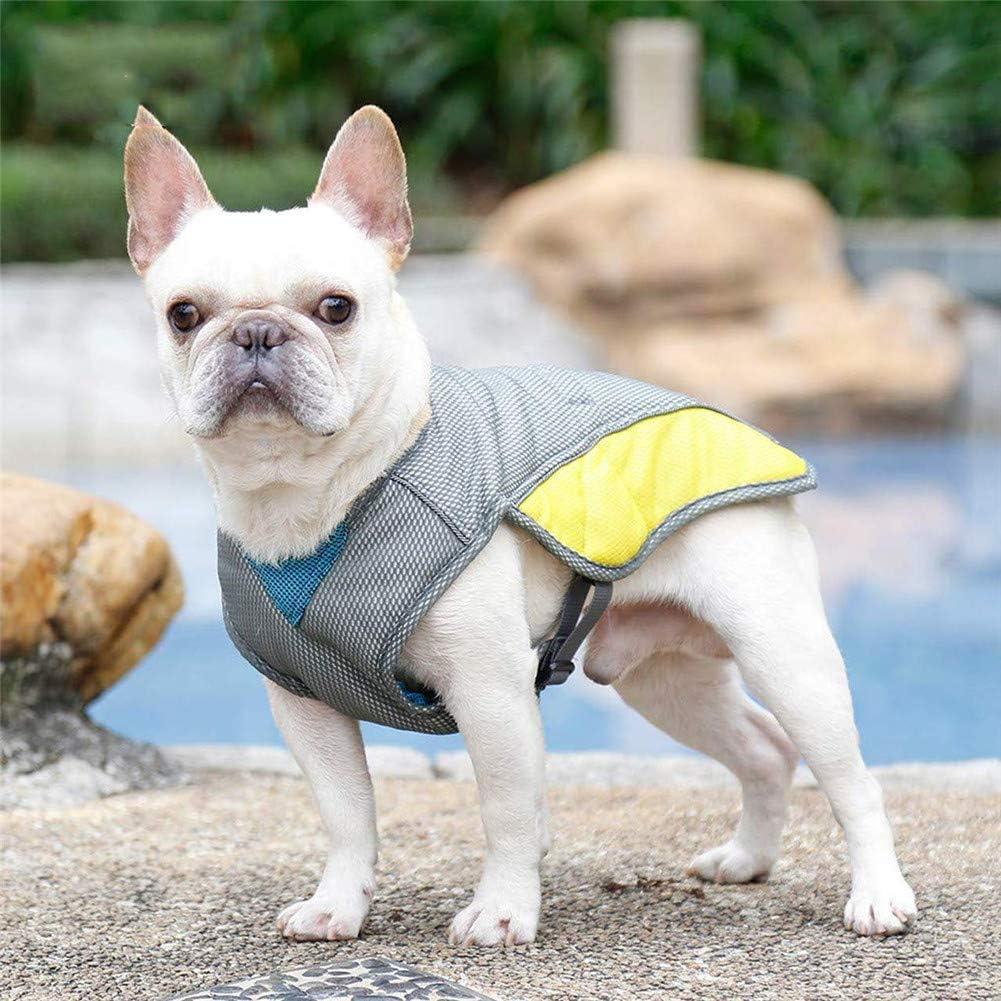 Arrampicata con Strisce Riflettenti e Fibbie Adatto per Cani allaperto Passeggiate Sport Traspirante BO/&CHAO Gilet rinfrescante per Cani