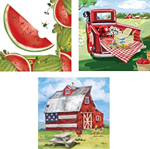 Bundle of 3 (20 ct) Americana Patriotic Red Barn Truck Summer Picnic Paper Beverage Napkins, July 4th