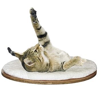 Kerbl Cama de pared oval Dolomit 50 x 35 x 1,5 cm: Amazon.es: Productos para mascotas