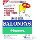 SALONPAS 6.5CM X 4.2CM 10 PAIN RELIEVING PATCHES - 10 PATCH