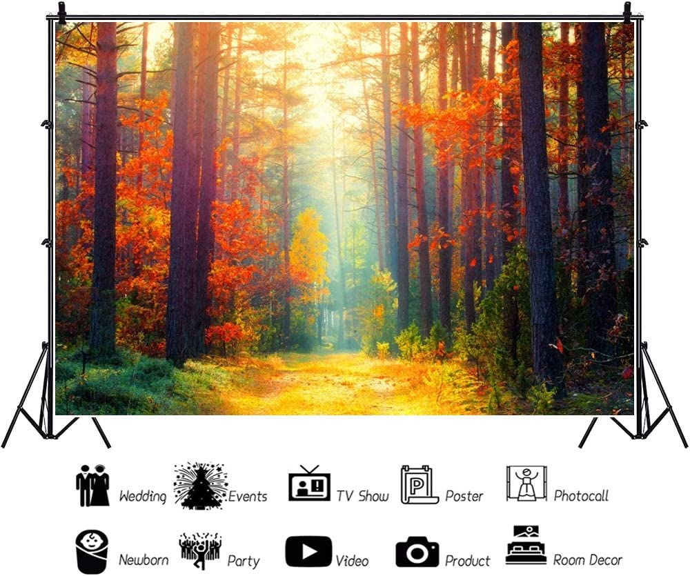 Yeele Dreamy Fall Landscape Backdrop 10x7ft Colorful Autumn Park on Sunny Morning Photography Background Fall Event Wedding Shower Outdoor Nature Scenery Countryside Wedding Photo Shoot Wallpaper