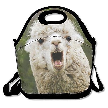 677131865fb3 Most Fashion Maker Funnny Llama Lunch Bags Insulated Travel Picnic Lunchbox  Tote Handbag Shoulder Strap Women Teens Girls Kids Adults