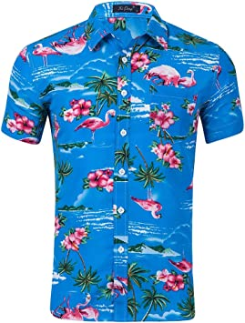 Men-yy Camisa Hawaiana para Hombre, Playera de Playa para Hombre Camisa de Manga Corta para Hombre Camisa clásica con Estampado Floral Casual Ajuste Regular, 7: Amazon.es: Deportes y aire libre