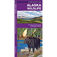 Alaska Wildlife: A Folding Pocket Guide to Familiar Animals (Wildlife and Nature Identification)