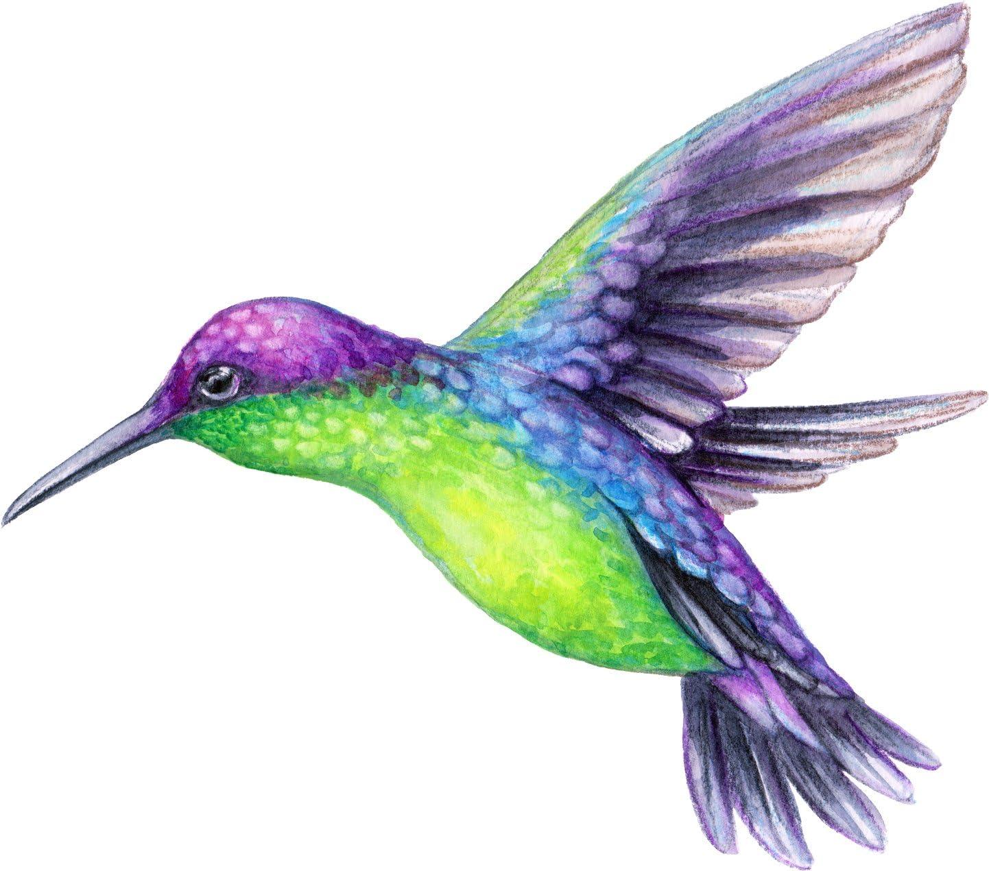 Beautiful Vibrant Colored Hummingbird Art #4 Vinyl Decal Sticker 4 Wide
