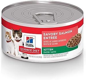 Hill's Science Diet Wet Cat Food, Kitten, Savory Salmon Recipe, 5.5 oz. 24 Pack