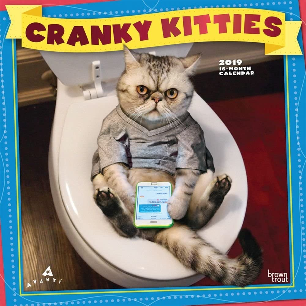 Calendario de pared Avanti Cranky Kittis, diseño de gatos divertidos por calendarios: Amazon.es: Oficina y papelería