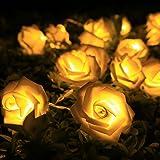 SunJas 2M Stringa di Rose LED Ghirlanda Luminosa 20 LED + Cassa di Batteria Festival Atmosfera Decorazione di Cerimonia/ Nozze / San Valentino / Compleanno / Natale / Feste/ Sera / Casa / Ristorante Bianco Caldo