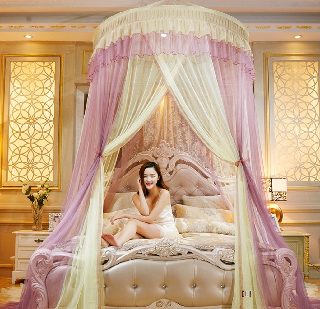 Princess Dream Butterfly Palace Ceiling mesh Diameter 1.5 Meters Plus Double Spell Parquet Floor Mosquito net ZXCV (Color : Blue+Pink, Size : 1.2m Bed) BEIRU
