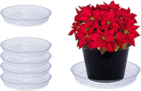 Pack of 3 Curtis Wagner Clear 17-Inch Plastic Pot Saucer