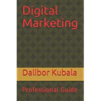 Digital Marketing: Professional Guide