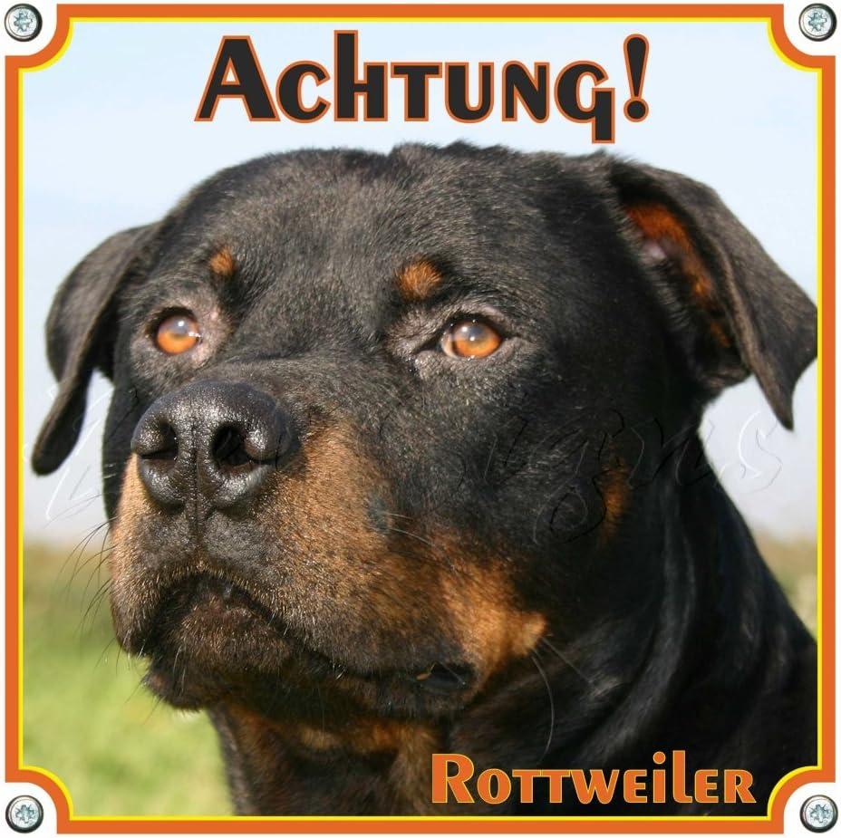 15 x 15 cm Exklusives Hundeschild aus Metall Petsigns Warnschild Rottweiler Achtung Rottweiler