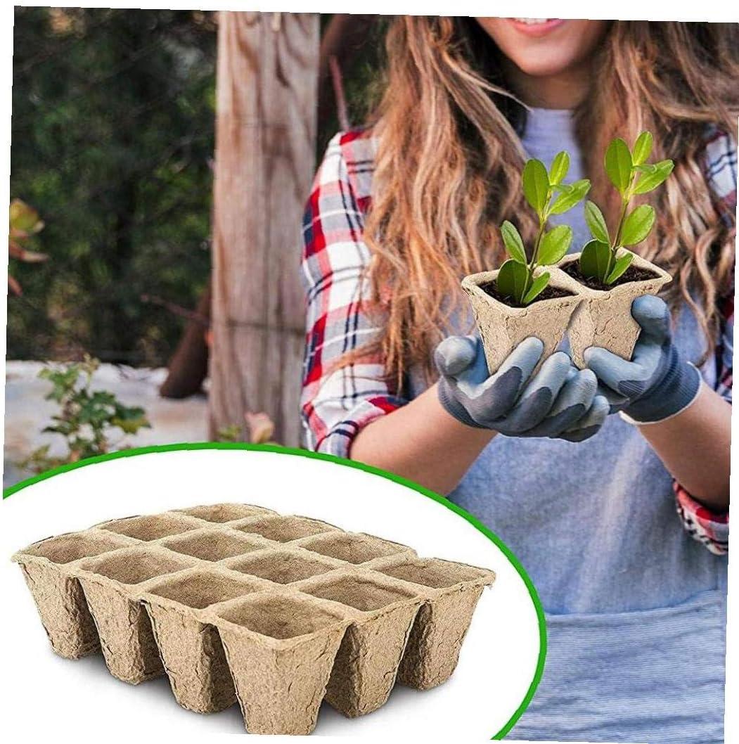 semilleros y macetas de Pulpa Son ecol/ógicos y biodegradables OPP 5pcs