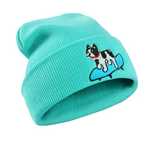 Mageed Anna New Women Winter Cap Keep Warm Dog Embroidery Applique Crochet Ski Hat Braided Caps