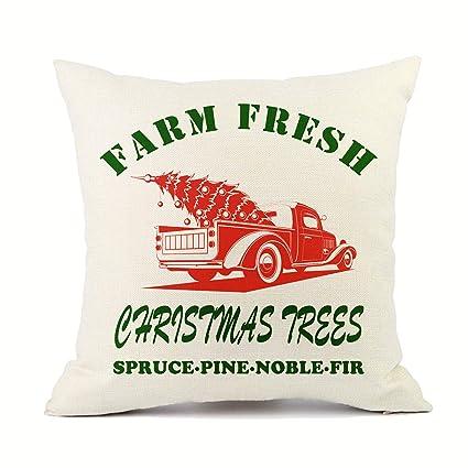 Amazon.com: VIOAPLEM Merry Christmas Red Truck Tree Throw ...
