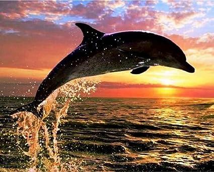 Diamante Pittura 5d Delfini Diy Pieno Trapano Tramonto Resina Ricamo