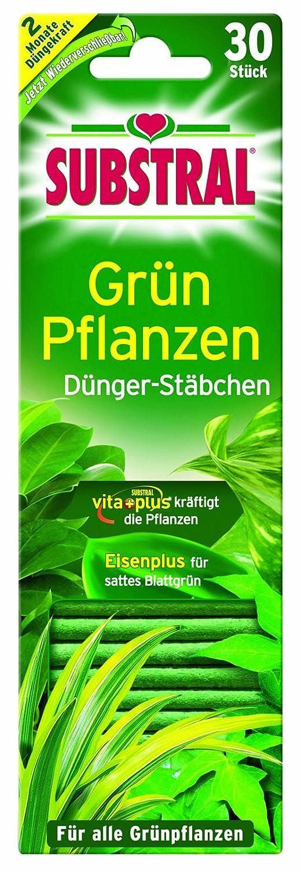 Substral Fertiliser sticks for Green Plants 30 St. 8740524