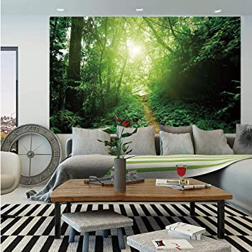 Amazon Com Landscape Wall Mural A Way In The Jungle Of Malaysia