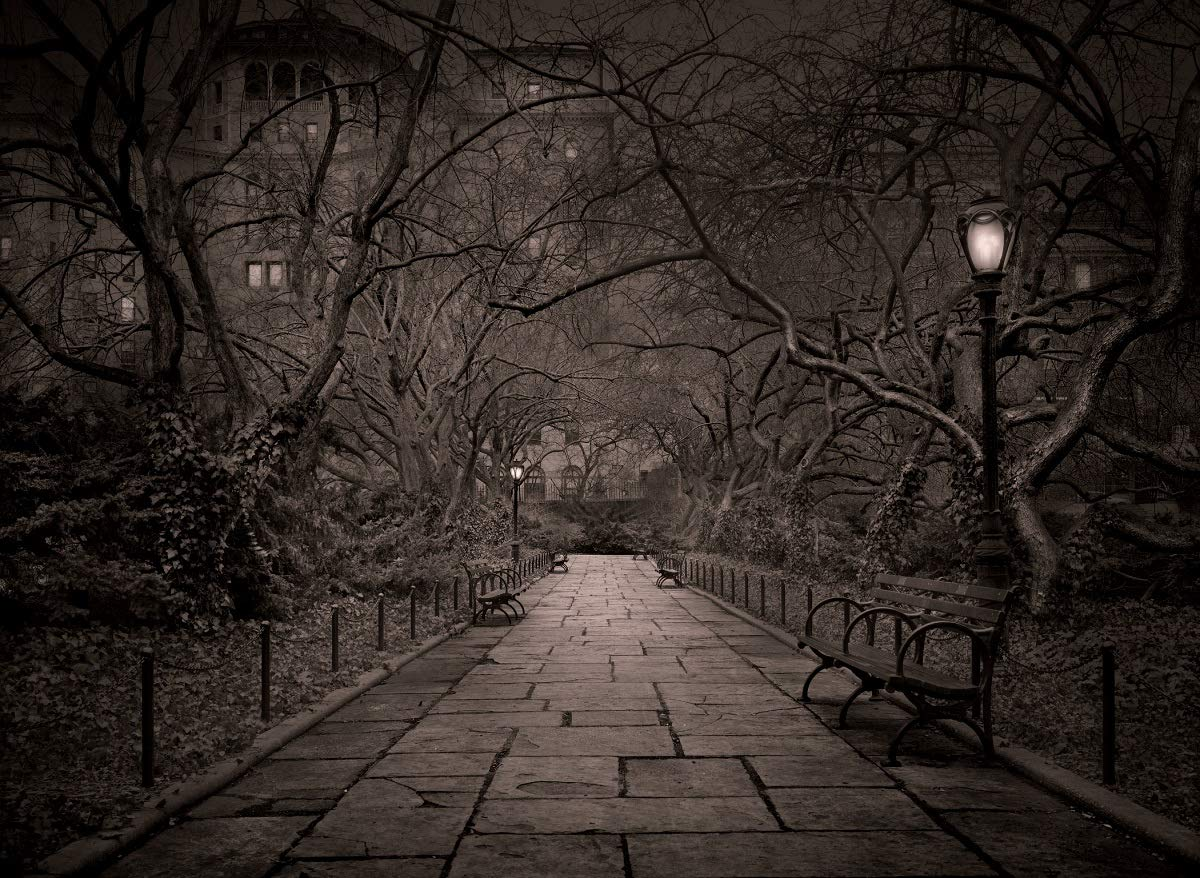 Private Garden, from Deep in a Dream - Central Park by