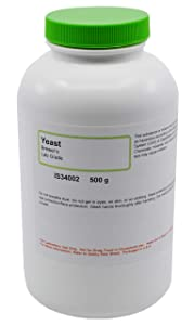 Brewer's Yeast, 500g - Laboratory Grade - Excellent for Biology Experiments - The Curated Chemical Collection by Innovating Science