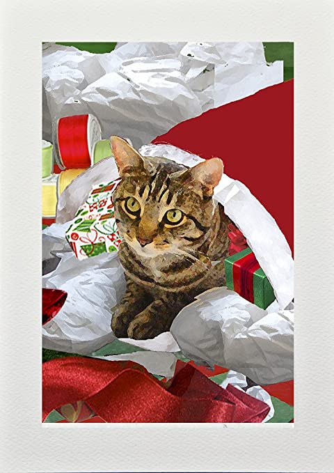 cat christmas cards handmade greeting card and gift set 10 5 x