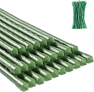 ZJIA 6 FT Garden Stakes 25 Pack Plant Support Stakes Sturdy Tomato Stakes with 100 Ties