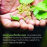 Gaia Herbs Vision Enhancement Liquid
