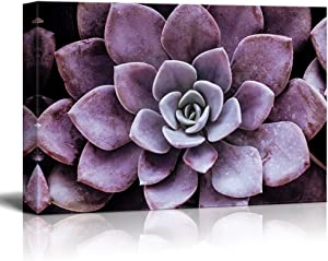 """wall26 Canvas Wall Art - Closeup of a Purple Succulent Plant - Giclee Print Gallery Wrap Modern Home Art Ready to Hang - 12"""" x 18"""""""
