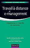 Travail à distance et e-management : Organisation et contrôle (Management - Ressources humaines)