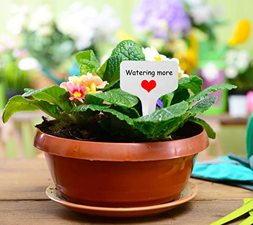 IVYSHION 50pcs Plantes en Plastique /Étiquettes Blanc Graines Balises Jardin Herb Marqueurs /Étanche Etiquettes Jardin ou Balcon pour Plantes L/égumes Fleurs,10x2cm