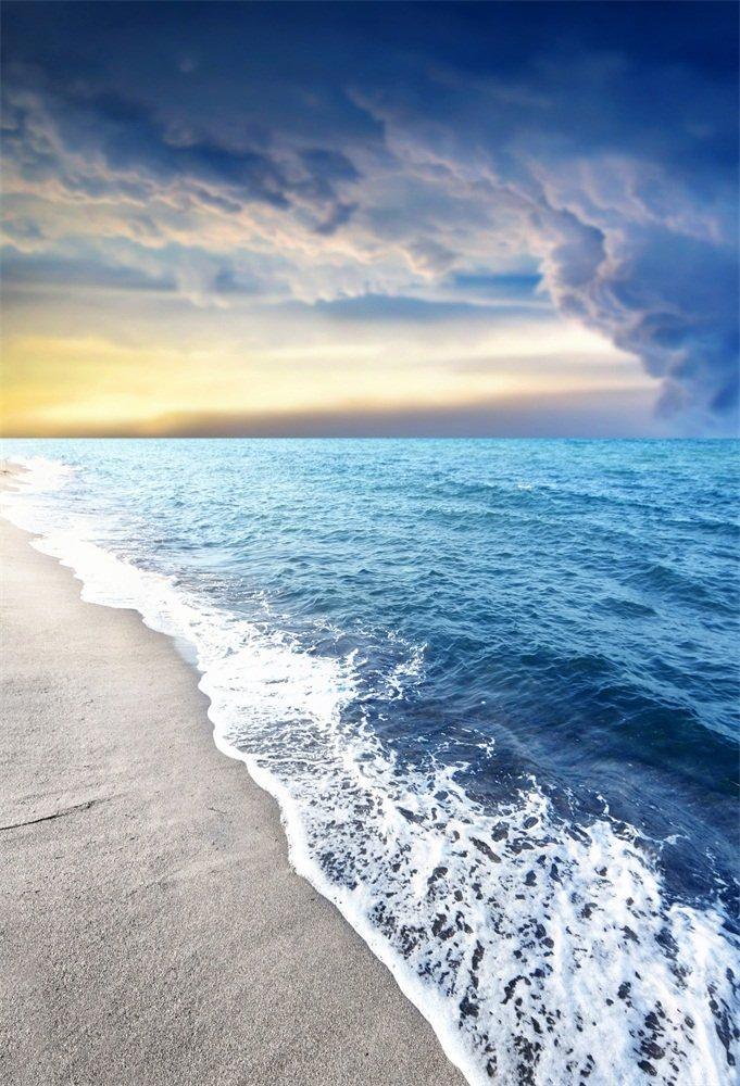 AOFOTO 4x6フィート 写真撮影用背景 芸術的な背景 海辺 波 ビーチ 空 雲 旅行 バケーション 子供 男の子 女の子 ポートレート 写真 スタジオ 小道具 ビニール壁紙   B07BP2R5JL