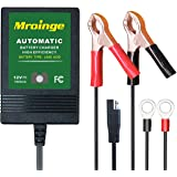 Mroinge MBC010 12V/1000mA Smart Battery Charger/Maintainer, big alligator clip and 12ft output cord