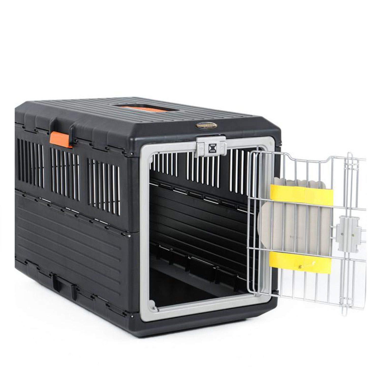 Amazoncom Pg One Portable Dog Free Box Outside Portable