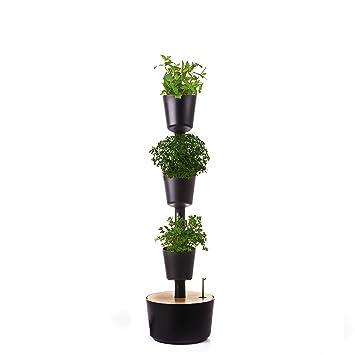 Citysens CS1035 Huerto urbano autorriego, Negro, 3 macetas, incluye semillas: Amazon.es: Jardín